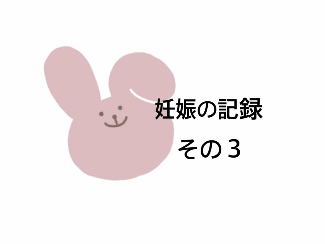妊娠の記録3