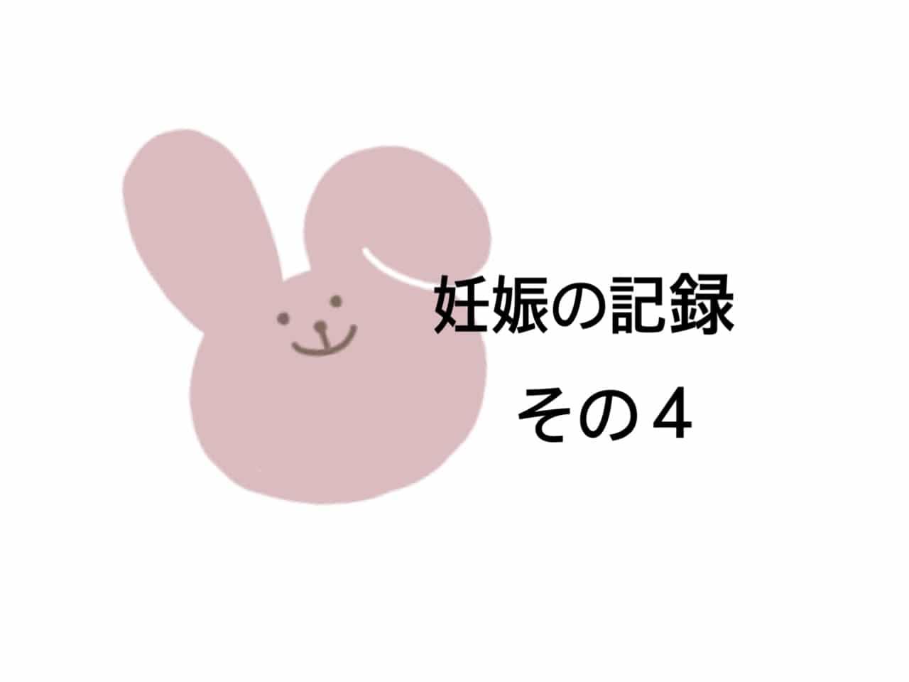 妊娠の記録4